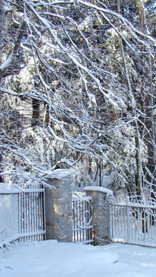 Back gate of the Garden in winter
