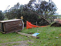 damage at wirth beach
