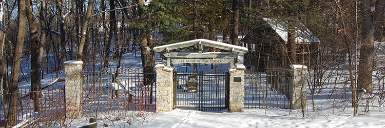 Front gate in winter