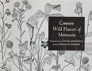 Book cover - Common Wildflowers